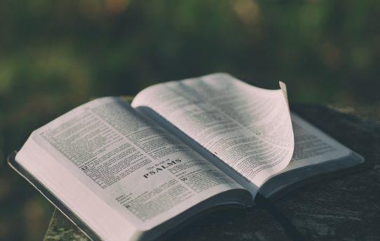 Lifeway's Survey About Jewish Evangelism