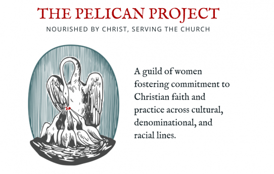 Meet the Pelican Project